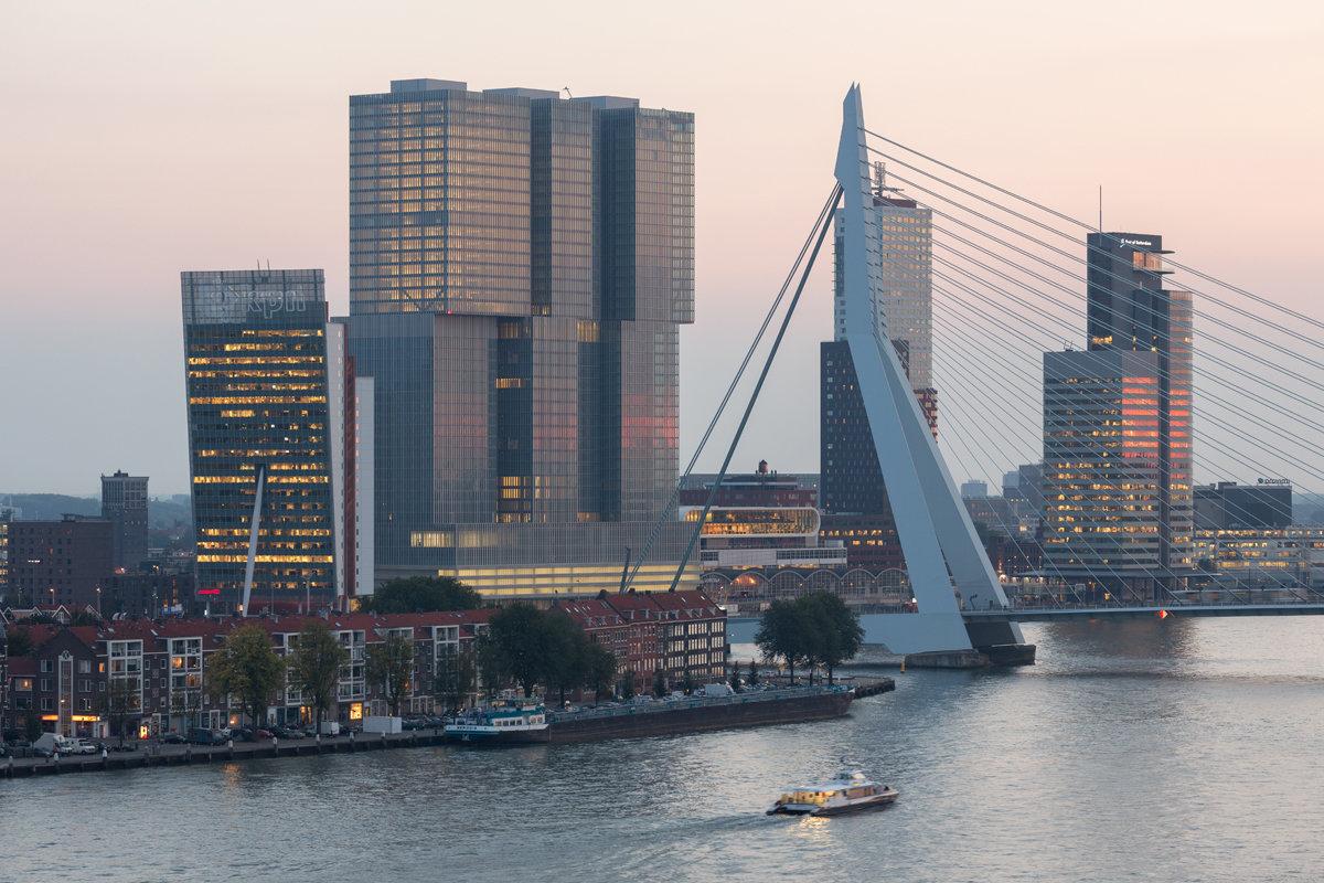 Modern Rotterdam, Kop van Zuid met Erasmusbrug  2016, Ossip van Duivenbode