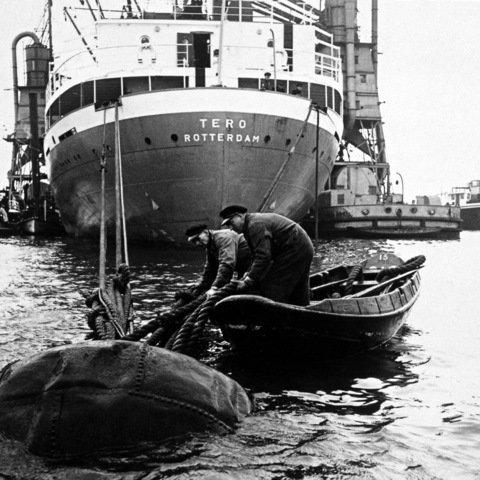 Historisch Rotterdam,  Roeiers jaren 50, Vrije Volk