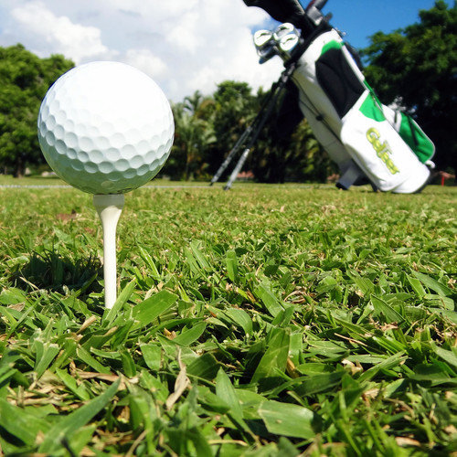 GelTees - biologisch abbaubare Golf Tees (weiß) 20 Tees | 1 Runde