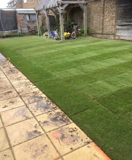 Family Lawn Turf  -  FROM £2.64 per m2