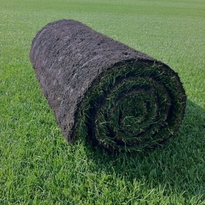 Supreme Turf  -  FROM £2.75 per m2 NW-Turf-Dlx