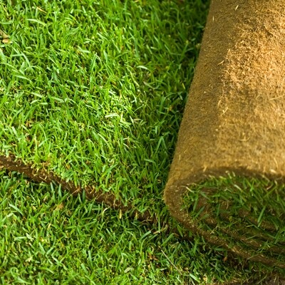 Lawn Master Turf  -  FROM £2.75 per m2 SALE! NW-Turf-LMT