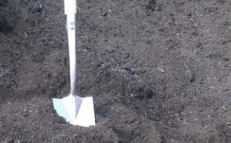 Tree & Shrub Planting Compost