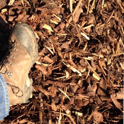 Medium Bark Mulch 10 65mm Buy Play Area Bark Amp Bark