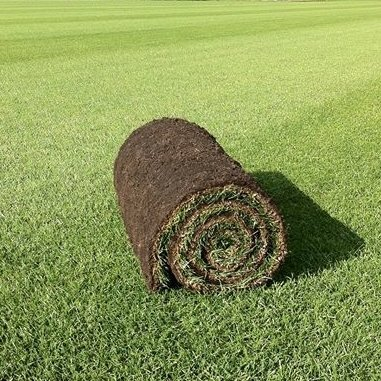 Family Lawn Turf  -  FROM £2.28 per m2 NW-Turf-FLT