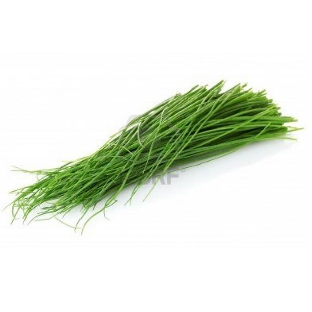 Onion Chives - Cebollina Fina - Cebolihna Fina - Ciboulette (h) (Envase de 8 oz.)