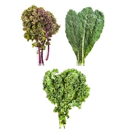 Col - Kale - Couve Galega - Chou frisé non-pommé (o) (maso de 1/3 Lb)