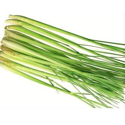 Hierba de LImon - Lemongrass - Capim Santo - Lemongrass (o) (maso de 1/3 Libra)