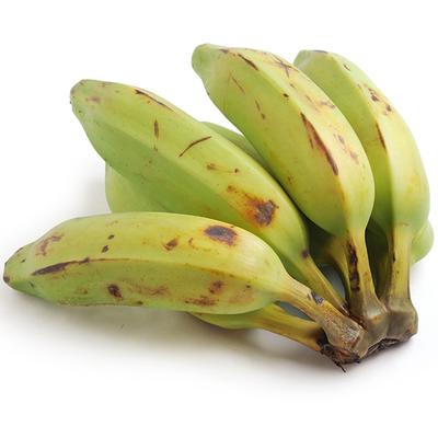 6 Square Bananas (o)