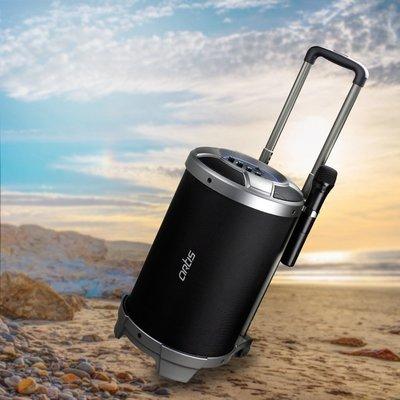 Artis BT900 Bluetooth Speaker
