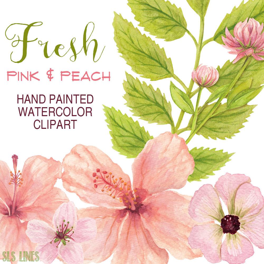 Fresh Pink & Peach Hibiscus Florals 00059