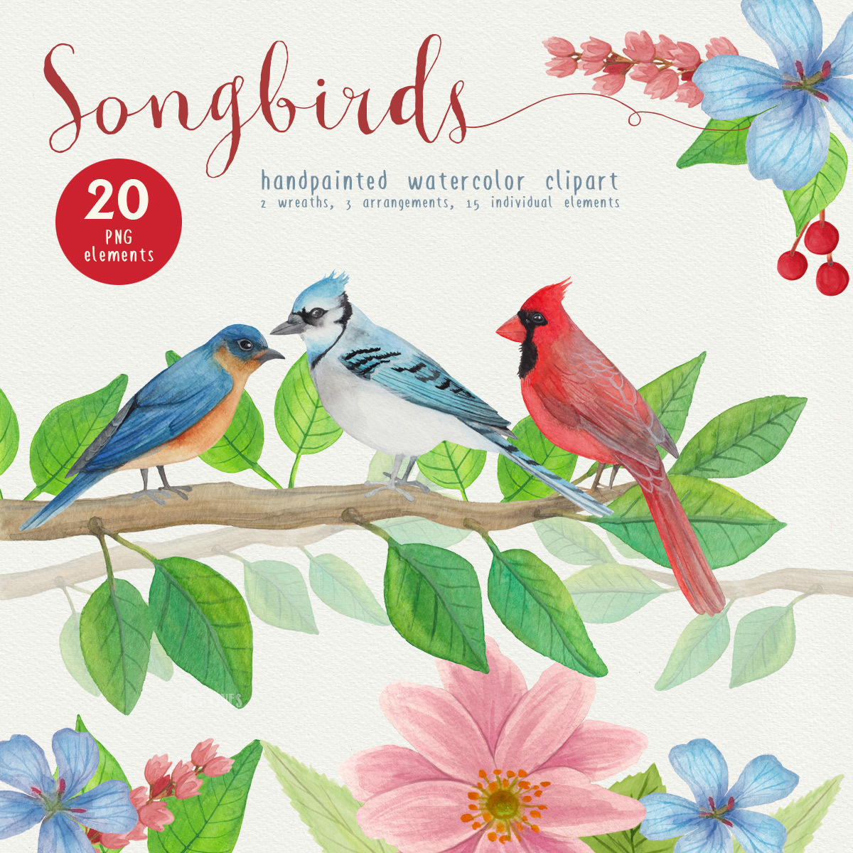 Song Birds Watercolor Clipart 00017