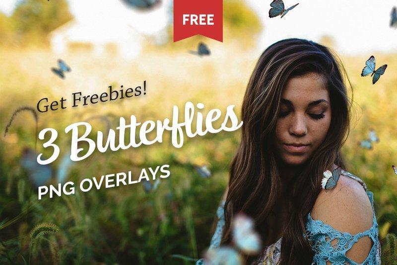 Free Butterflies Photo Overlays