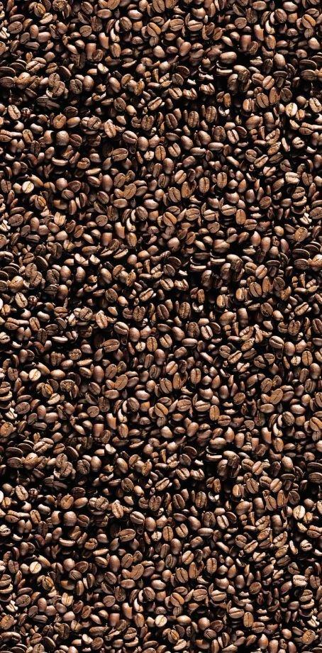 Motiv Coffee