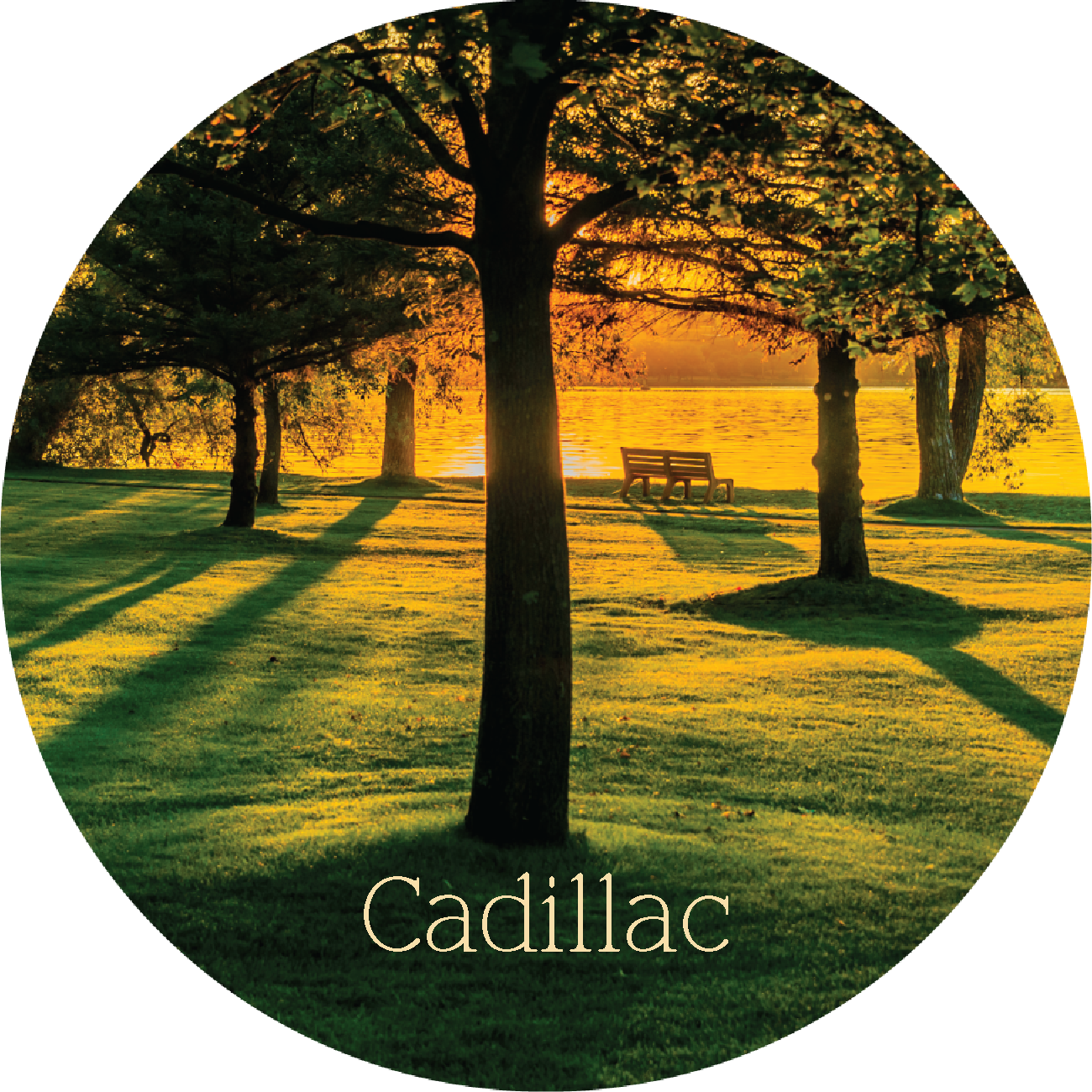 Cadillac Michigan Park Magnet