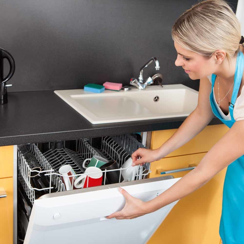 clean the inside of your dish washer while you wash