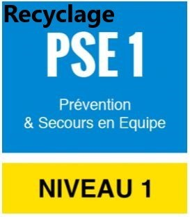 RECYCLAGE FORMATION PSE 1 - 18 MAI 2019 - 9H/12H - 14H/17H
