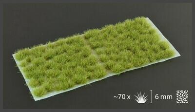 Dry Green (6mm wild)
