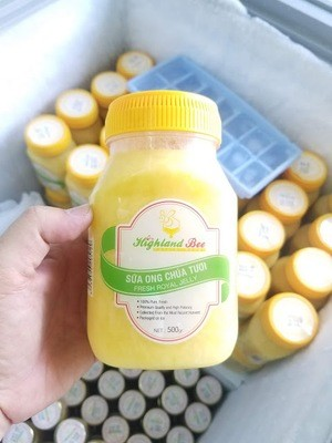 Sữa ong chúa hũ nhựa 500g