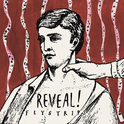 Reveal - Flystrips