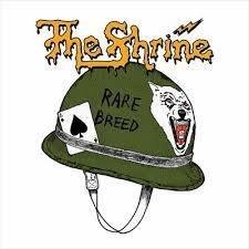 Shrine, The - Rare Breed
