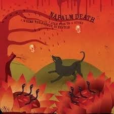 Napalm Death / Melt-Banana – Like Piss To A Sting
