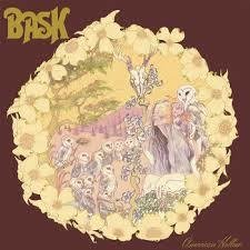Bask - American Hollow