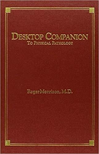 Desktop Companion