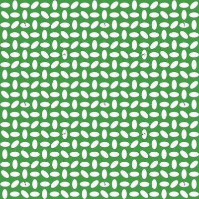 Contempo Dino Age Dots Green