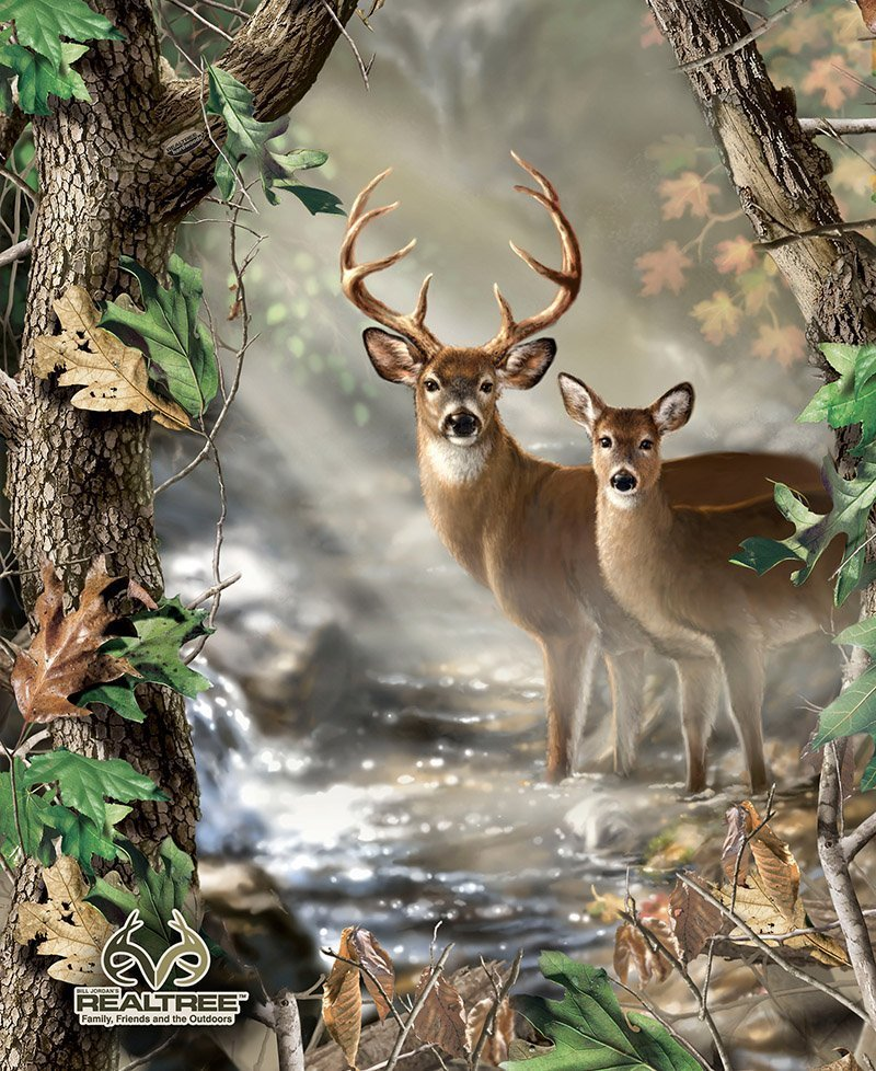 Real Tree Buck And Doe Panel