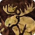 RK Wildlife Sanctuary Brown Moose