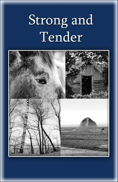 Strong and Tender ( A book for grieving fathers) 978-0961519773