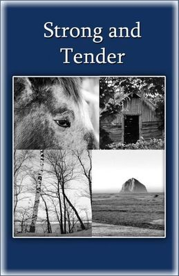 Strong and Tender ( A book for grieving fathers)