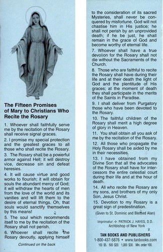 15 Promises of the Rosary Bookmark (One Hundred Pack)