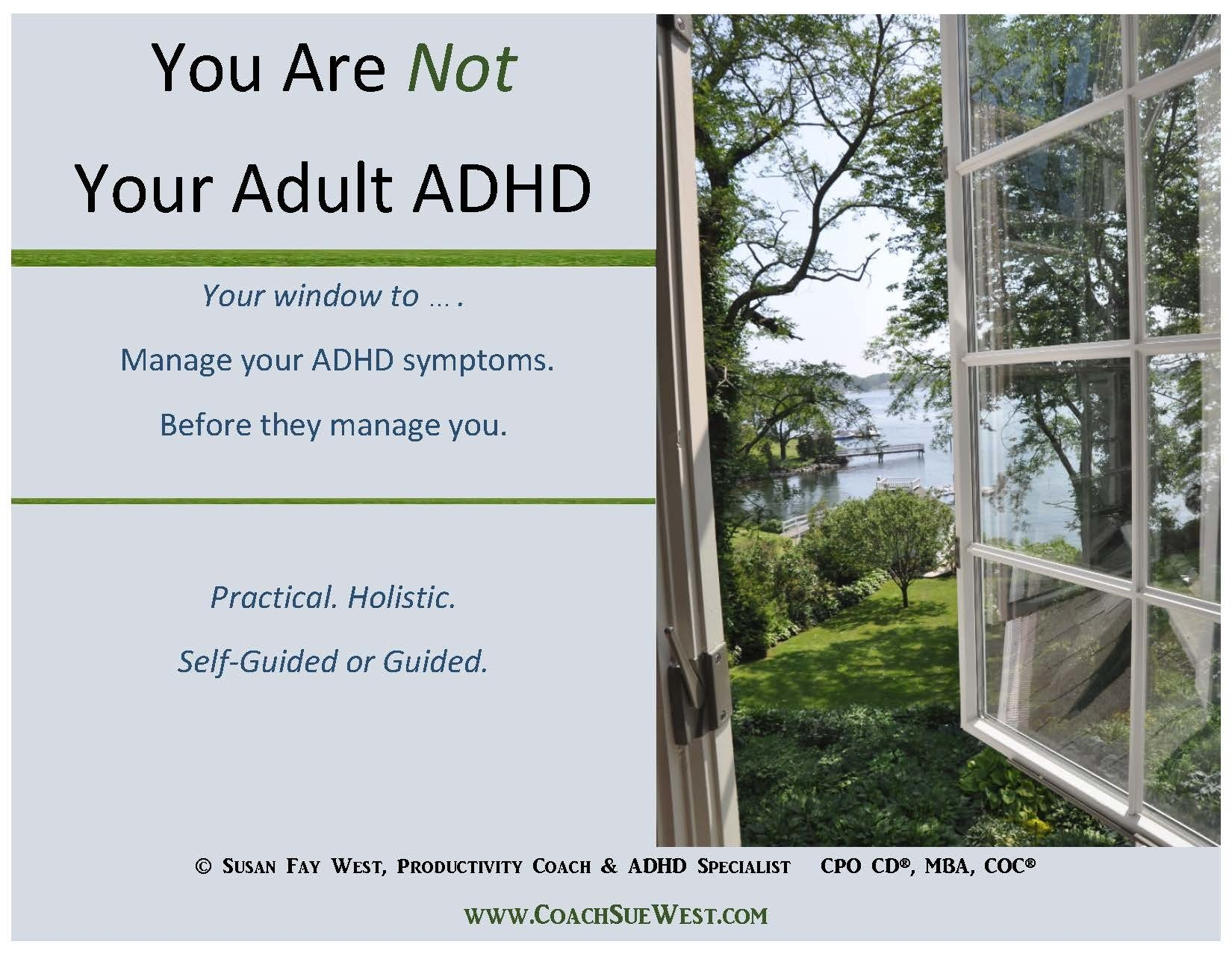 Workbook Only: You Are Not Your ADHD 05012017