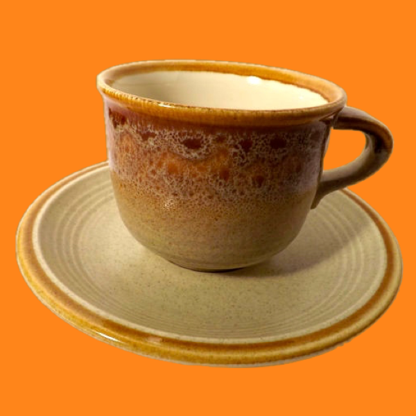 20% OFF - Mikasa Stoneware - Nature's Song - Cup/Saucer - 2 Avl. 00129