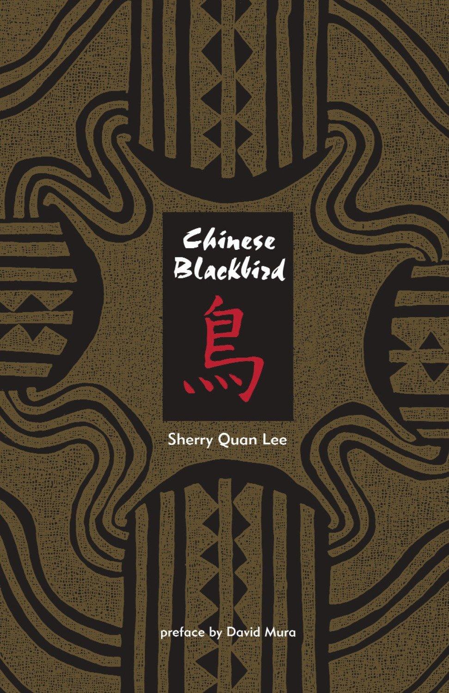 Chinese Blackbird