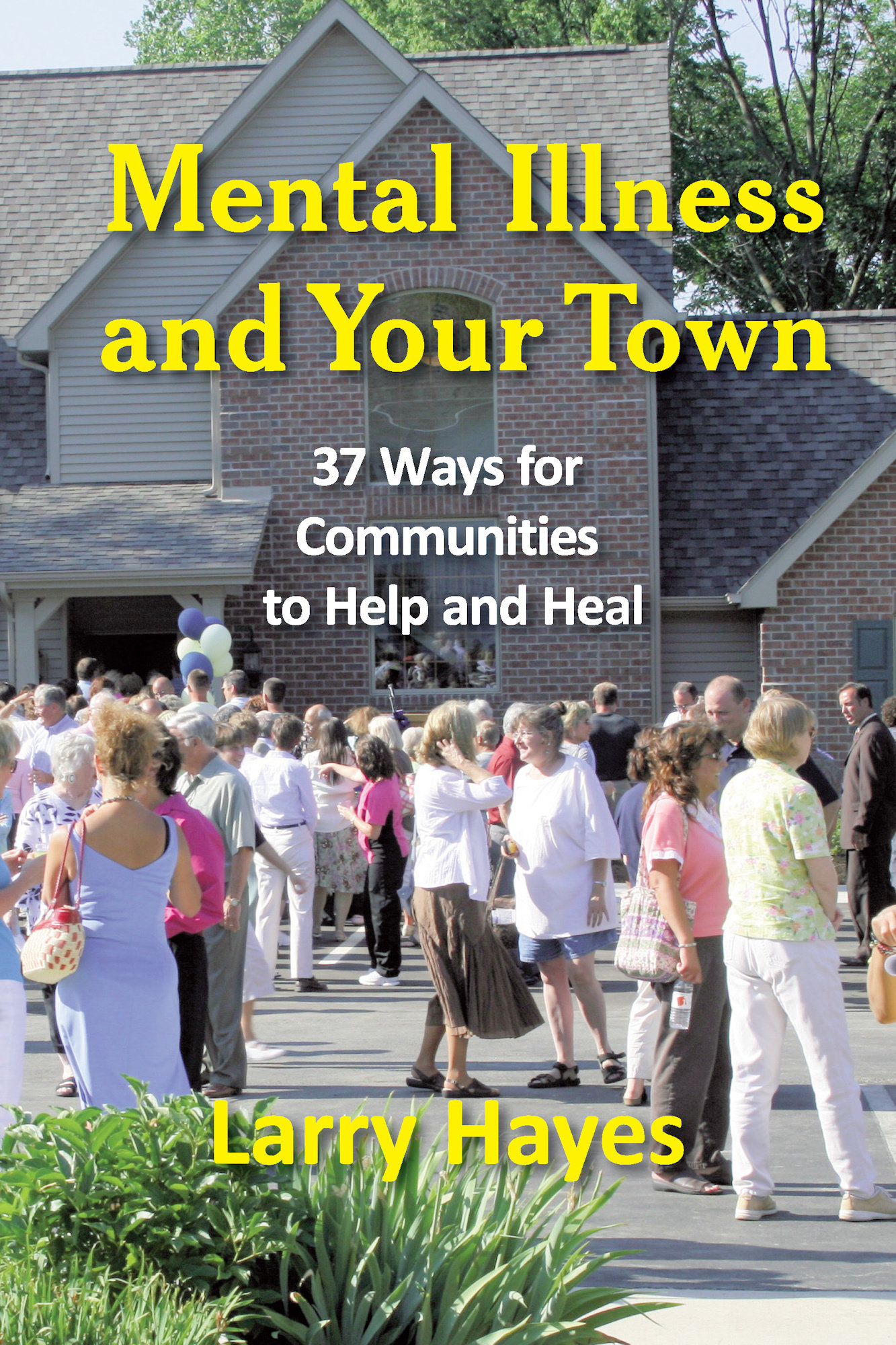 Mental Illness and Your Town: 37 Ways for Communities to Help and Heal 978-1-932690-76-7