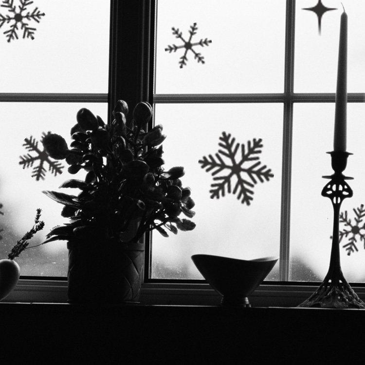 Snowflakes 5003