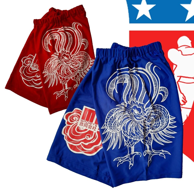 ONDORI Shorts