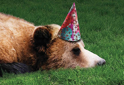 Grizzly Birthday 2