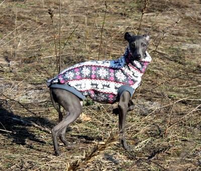 Dog warm t-shirt  (different colours, fur inside)