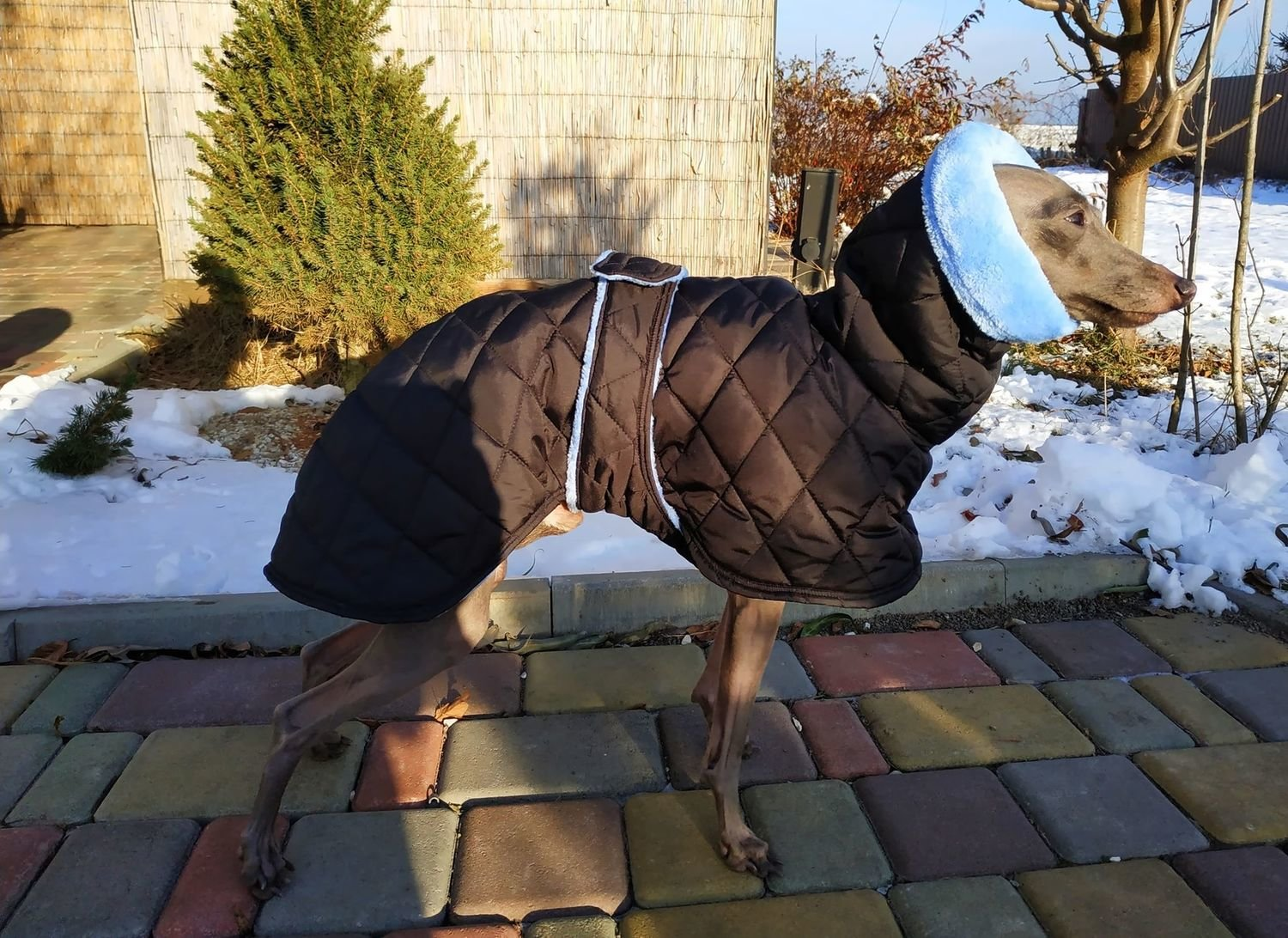 "Waterproof coat ""Winter"" (different colors)"