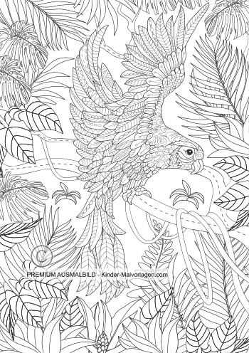 Papagei im Dschungel zum Ausmalen
