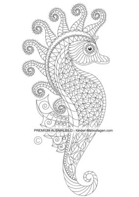 ausmalbilder erwachsene seepferdchen - kostenlos zum ausdrucken