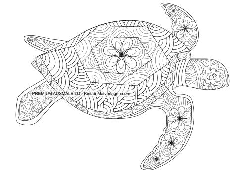 Wasserschildkröte-Ausmalbild für Erwachsene