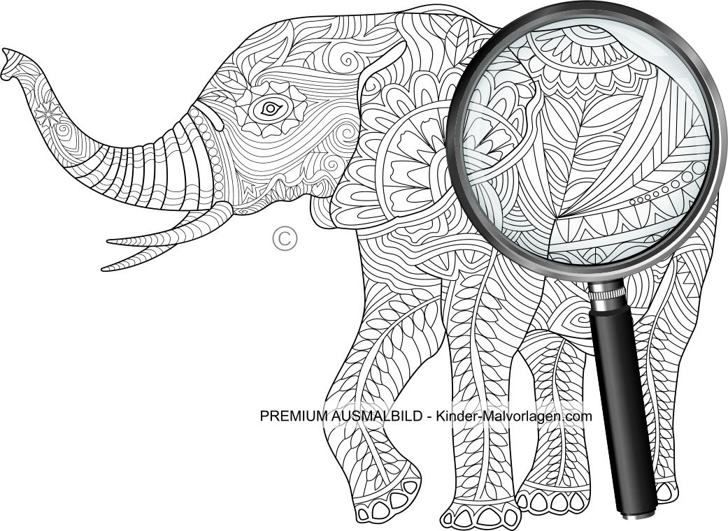 Elefant - Ausmalbild für Erwachsene