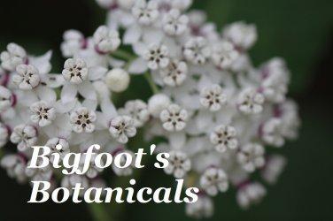 Bigfoot's Botanicals