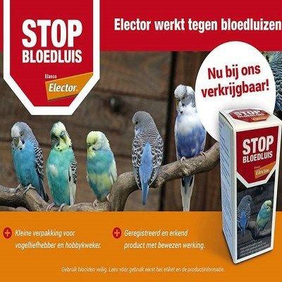 Stop bloedluis van elector 00364