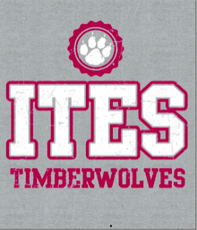 ITES Timberwolves t-shirt YOUTH SMALL